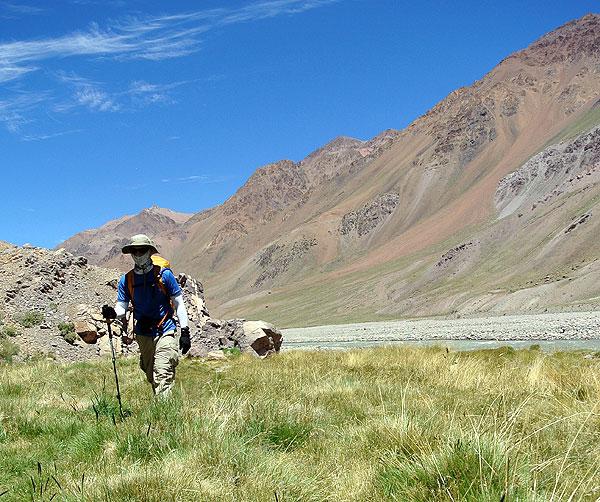 Aconcagua-hiking-Vacas