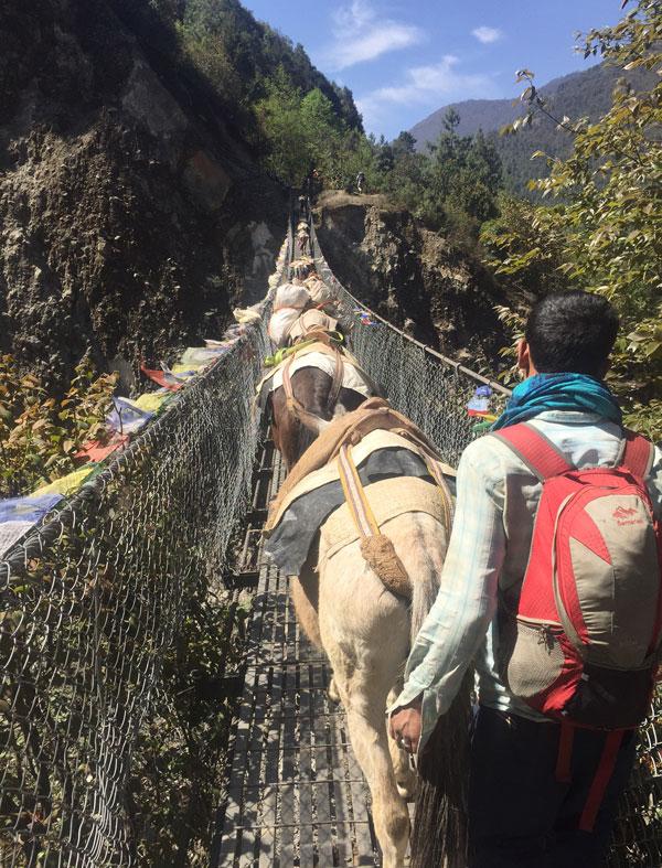 Nepal trek bridge