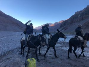 Mules River Crossing Aconcagua